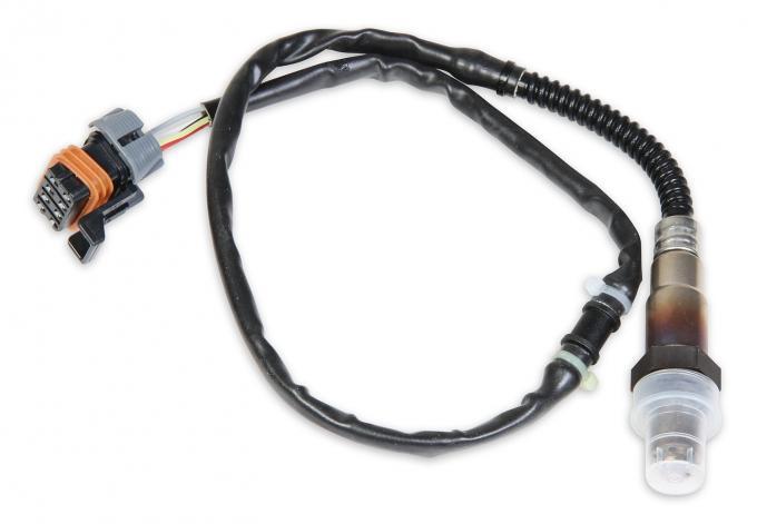 Holley EFI Wideband Oxygen Sensor 554-101