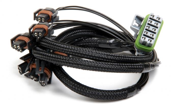 Holley EFI Fuel Injection Wire Harness 558-206