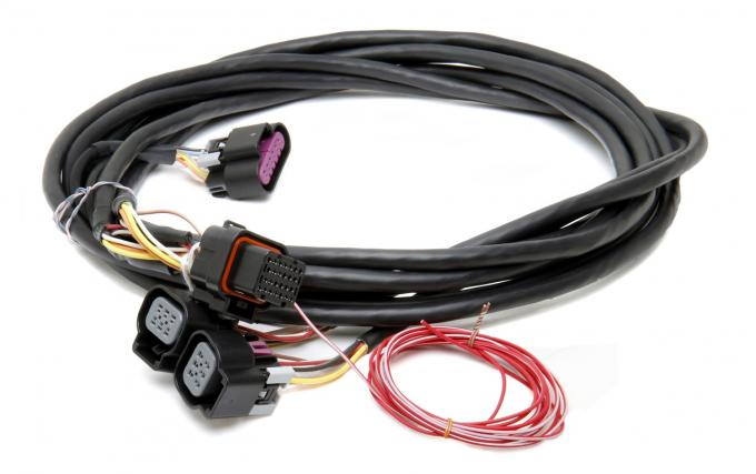 Holley EFI GM Dual Throttle Body Drive-By-Wire Harness 558-411