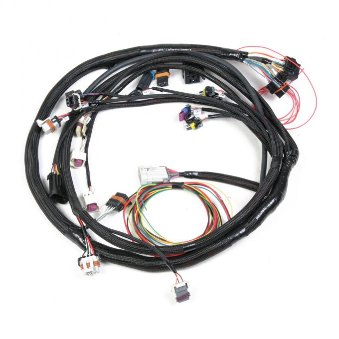 Holley EFI Universal Multi-Point Main Harness 558-104