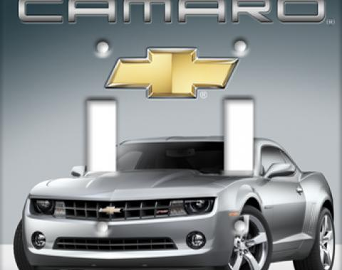 Silver Camaro Switchplate, Double