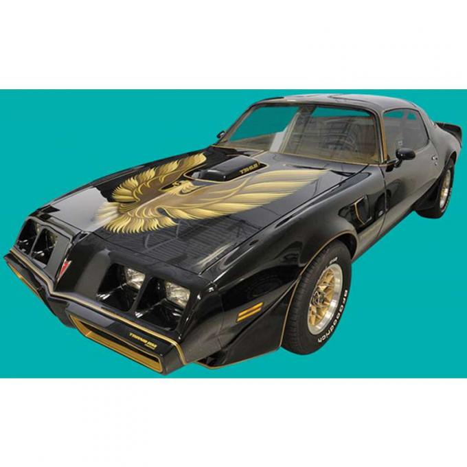 Firebird Decal Set, Trans Am, Special Edition, Ultimate Kit, 1978-1981